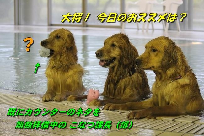 さくら&こなつ 0955