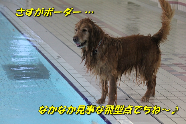 プール&旭化成謝罪 095