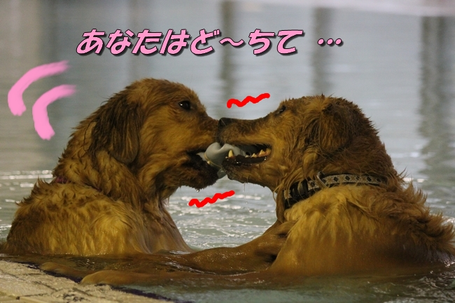 さくら&こなつ 138