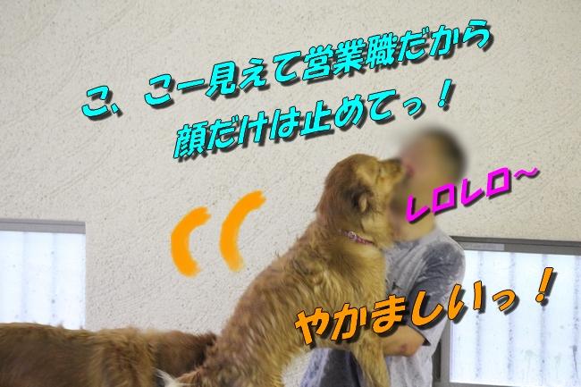 さくら&こなつ 170