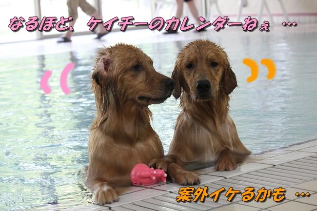 with こなつ&さくら 042