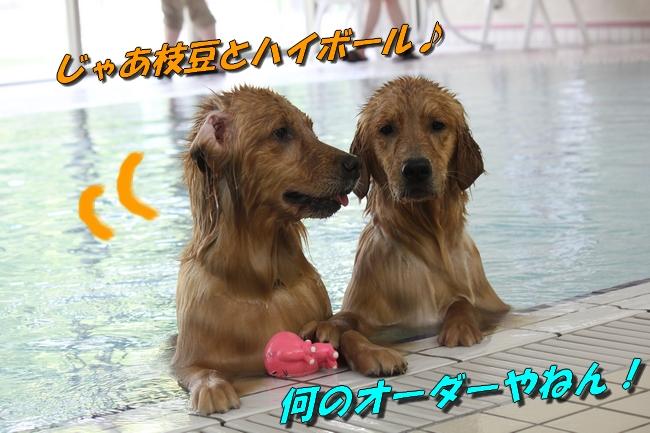 with こなつ&さくら 041