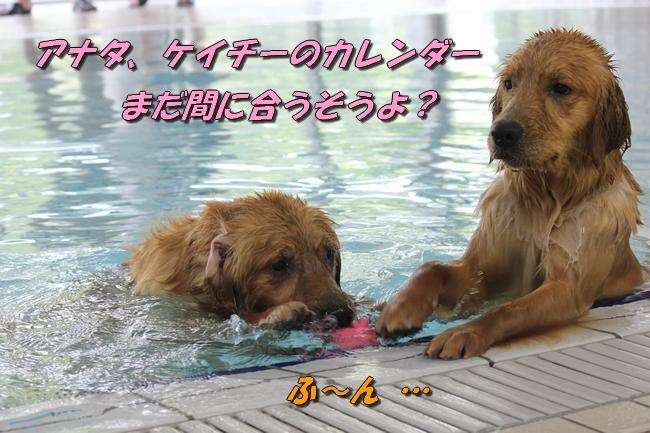 with こなつ&さくら 054