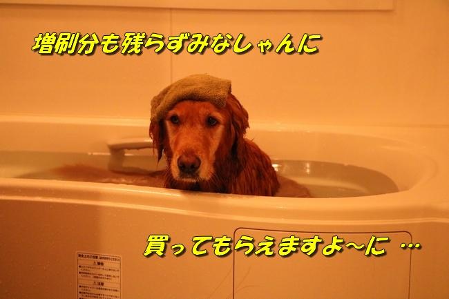 いい湯だな 006