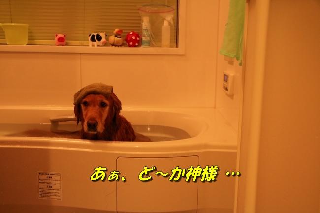 いい湯だな 007