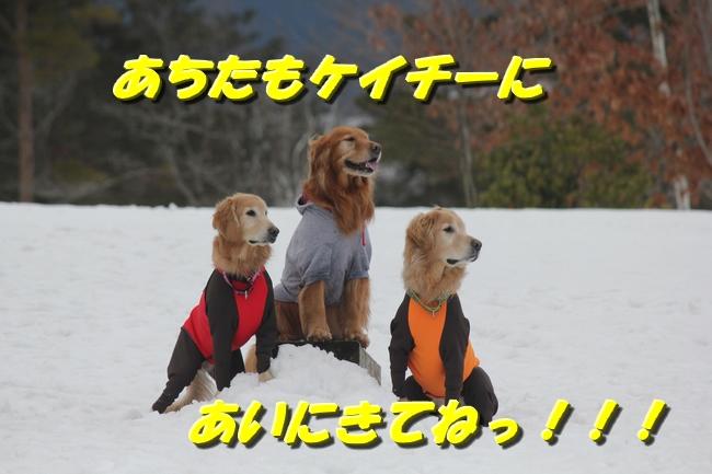 AKD雪遊び 161
