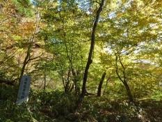 高梨家跡の紅葉