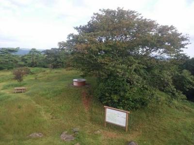 展望台から見た山頂