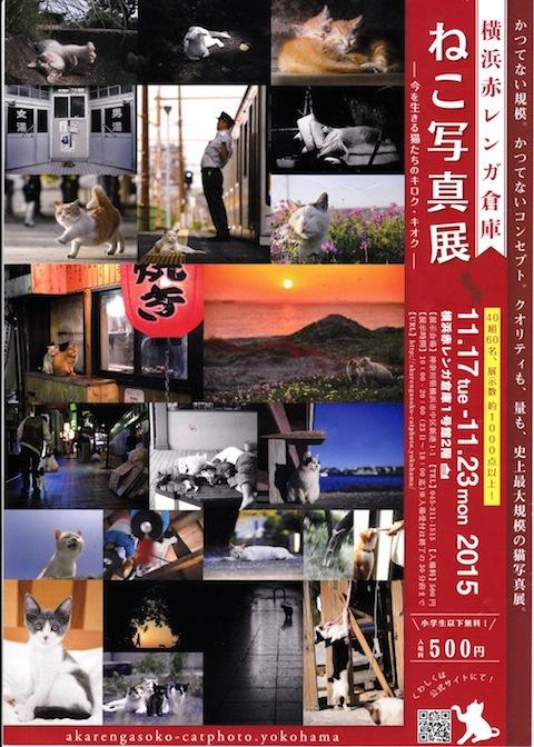 赤レンガねこ写真展 のコピー