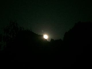 バンガローから見た月