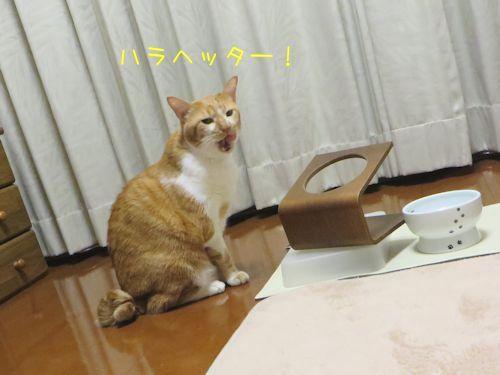 食べたーい