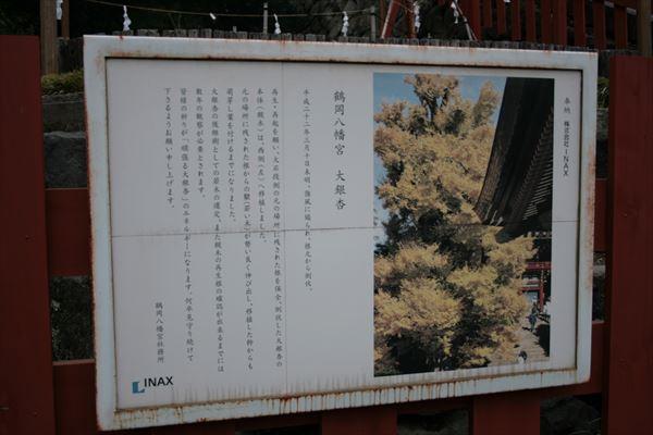 1212 神奈川050