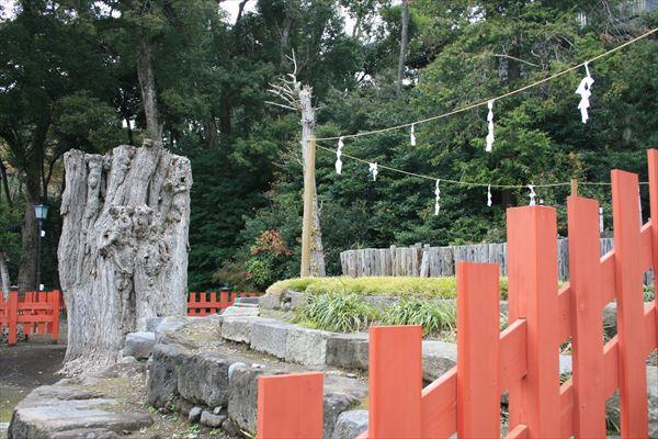 1212 神奈川052