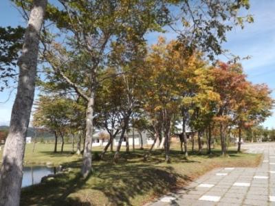 DSCF4150.jpg