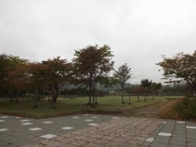 DSCF4175.jpg