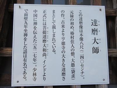 IMG_0597 達磨