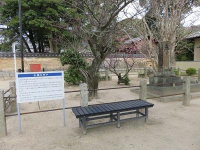 IMG_1501 井戸