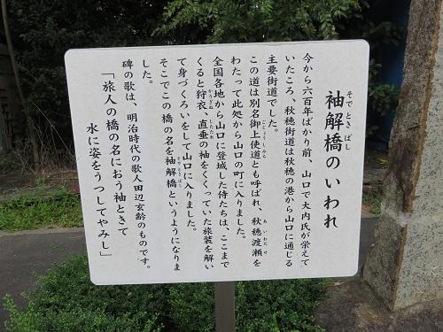 IMG_6001 袖解橋