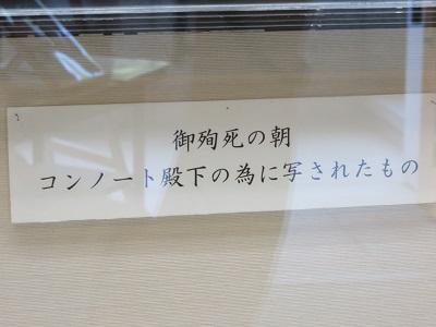 IMG_3682 乃木
