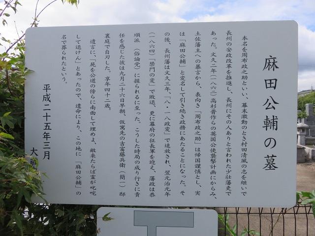 IMG_6052 麻田