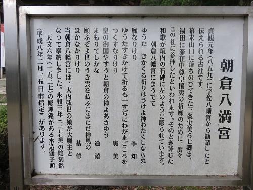 IMG_6148 朝倉