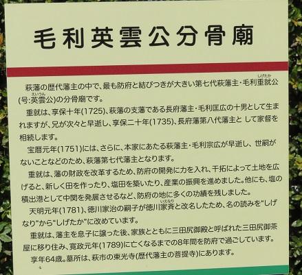 IMG_1592 毛利