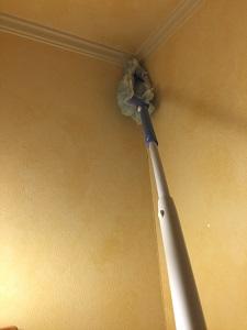 トイレ天昇