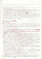 naoko-tibetto-6.jpg