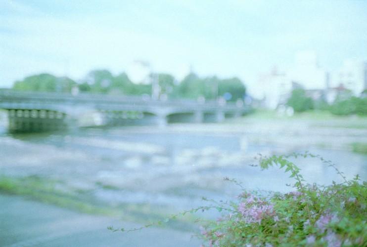 淡景/デルタ
