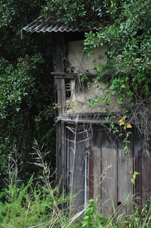 路傍の廃屋