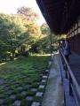 東福寺2015