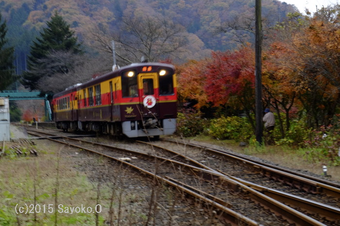 DSCF9149.jpg