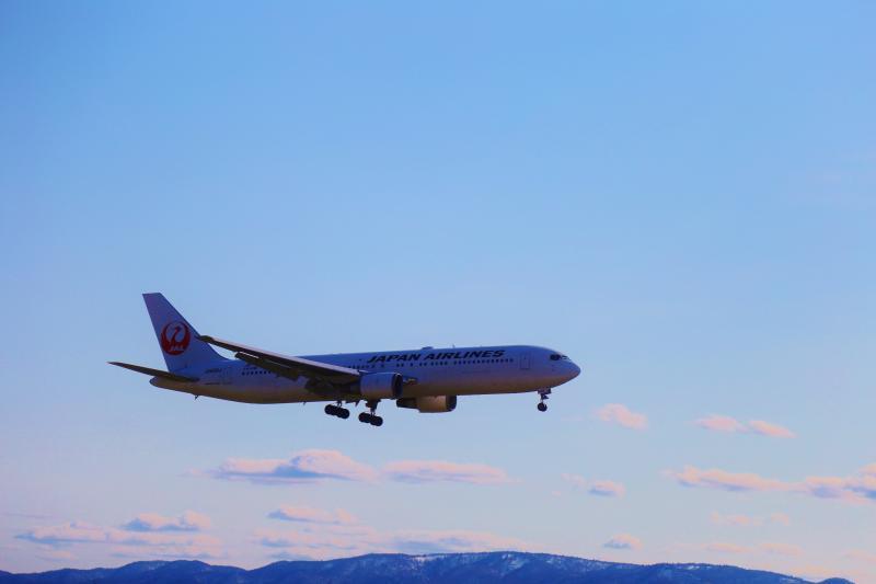 JAL1.jpg