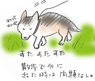 2hopashikoshi.jpg