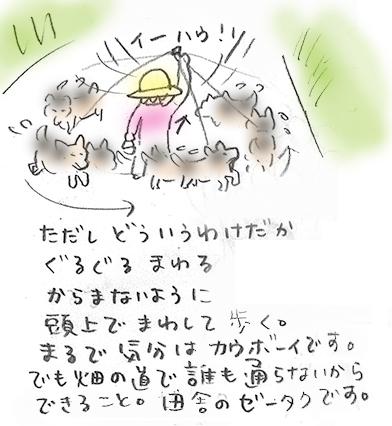 3hopashikoshi.jpg