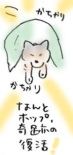 5kiseki.jpg