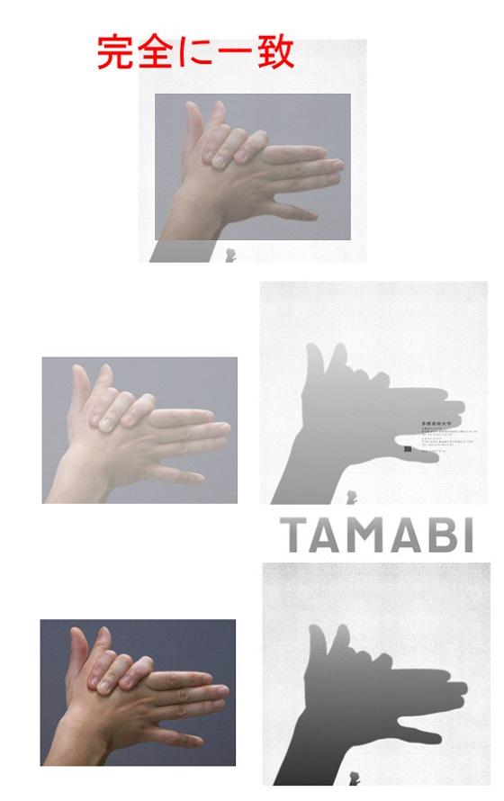 tmbp3