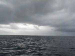 DSCN1283 12時半ころ 風向きが変わり雨が来そうなので上がり