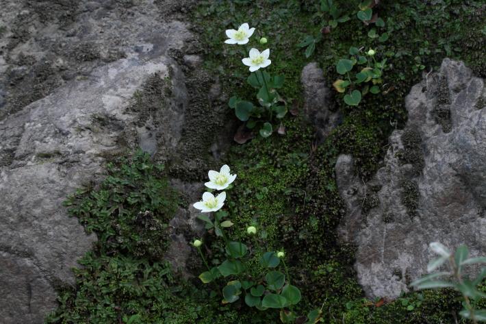 151030-151.jpg