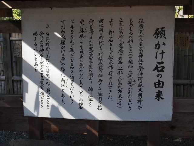 151020-319.jpg