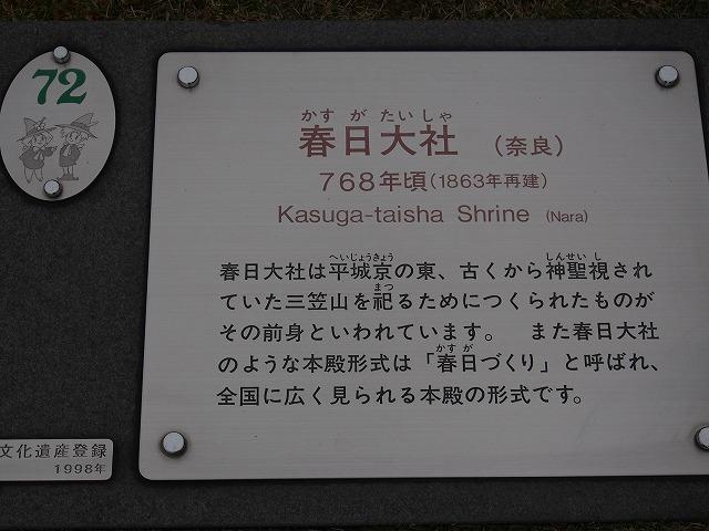 151107-403.jpg