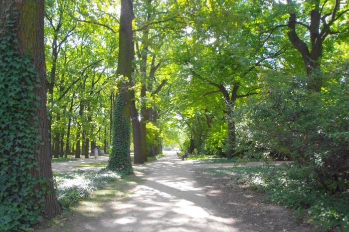 ワジンスキー公園 (2)