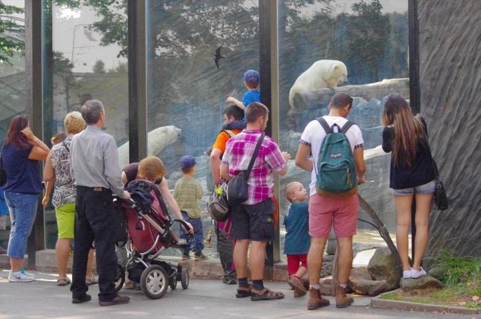 プラハ動物園 (16)_R