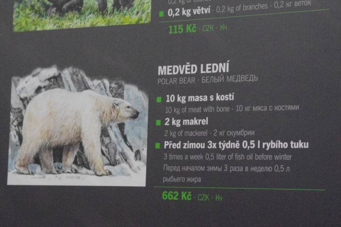 プラハ動物園 (27)_R