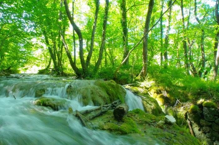 プリトヴィツェ湖群国立公園 (94)