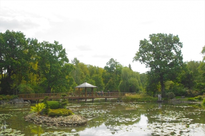 ヴロツワフ日本庭園 (12)
