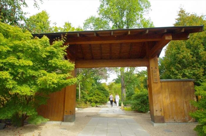 ヴロツワフ日本庭園 (5)