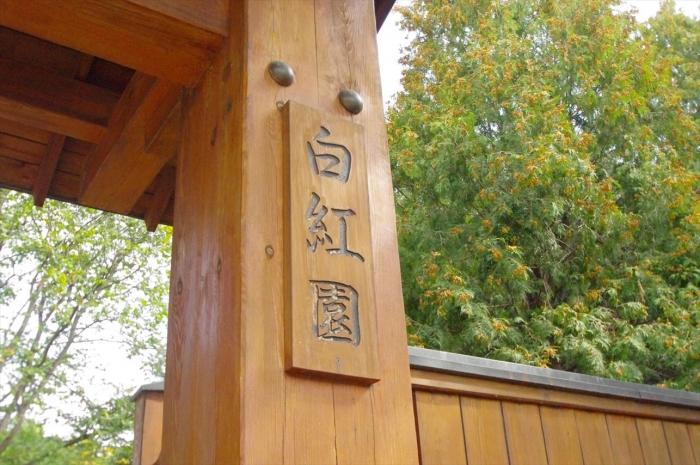 ヴロツワフ日本庭園 (6)