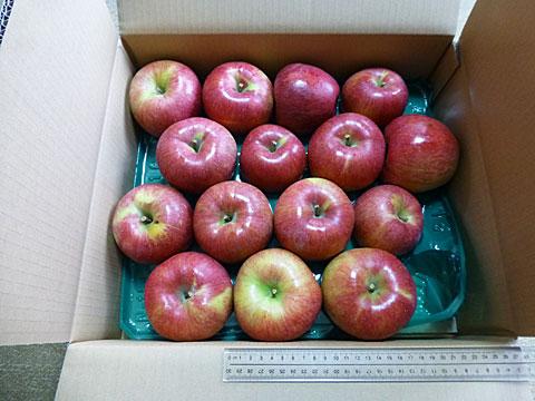 15 10/8 リンゴ