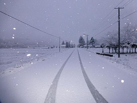 15 11/11 雪 道